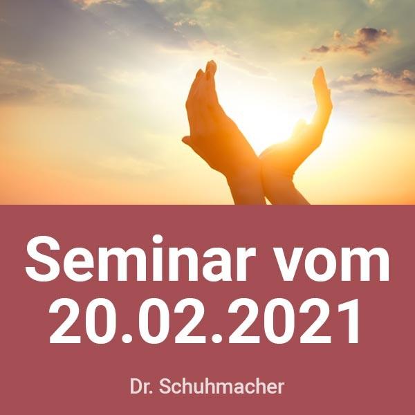 Seminar-Aufzeichnung vom 20.02.21 (USB-Stick)